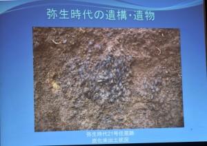 弥生時代の炭化した米には籾殻がついているのが謎
