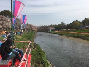 川床を楽しむ人たち。写真右側の右岸が「四季の花畑ゾーン」となった